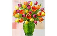 Assorted Tulips - 1800flowers