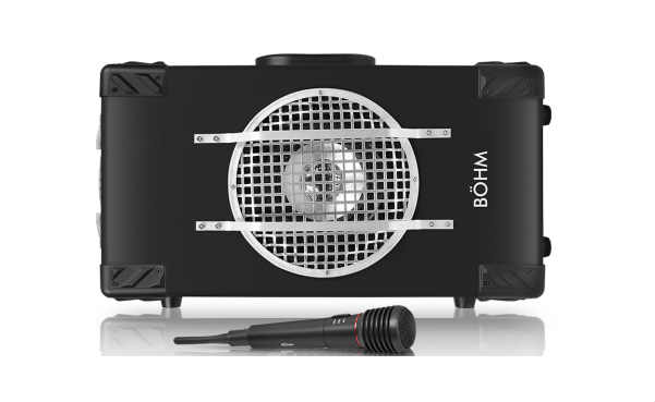 BÖHM StagePro Trolley Speaker