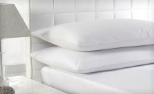White Duck Feather Pillows