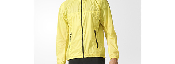 adidas TERREX Mistral Men's Wind Jacket