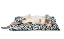 Thermal Self-Warming Quilted Pet Bed