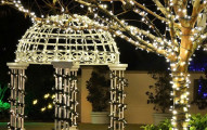 LiteUp Solar Powered LED String Lights