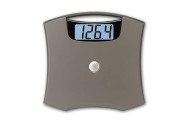 Taylor 440 Pound Capacity Electronic Scale