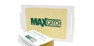Catchmaster 72MAX Pest Trap, 36Count